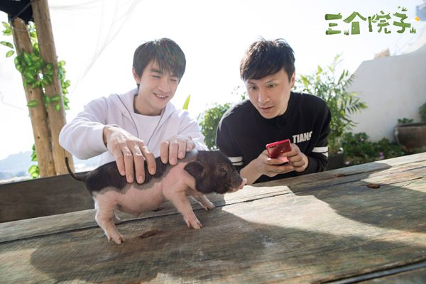 林更新朱桢在《三个院子》养猪!